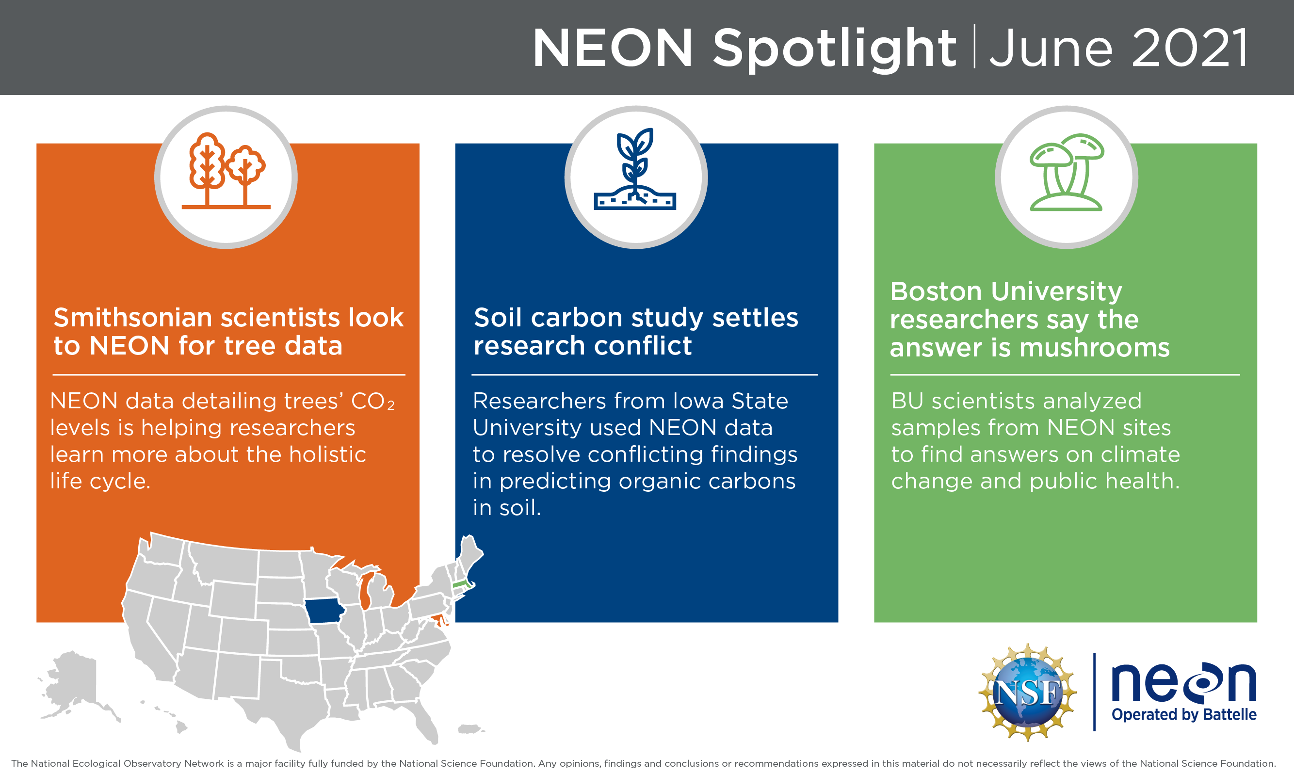 Photo: What's New In NEON June 2021