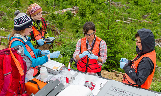 Hundreds of early-career ecologists collect data from Alaska to Florida to fuel continental-scale research for the National Science Foundation