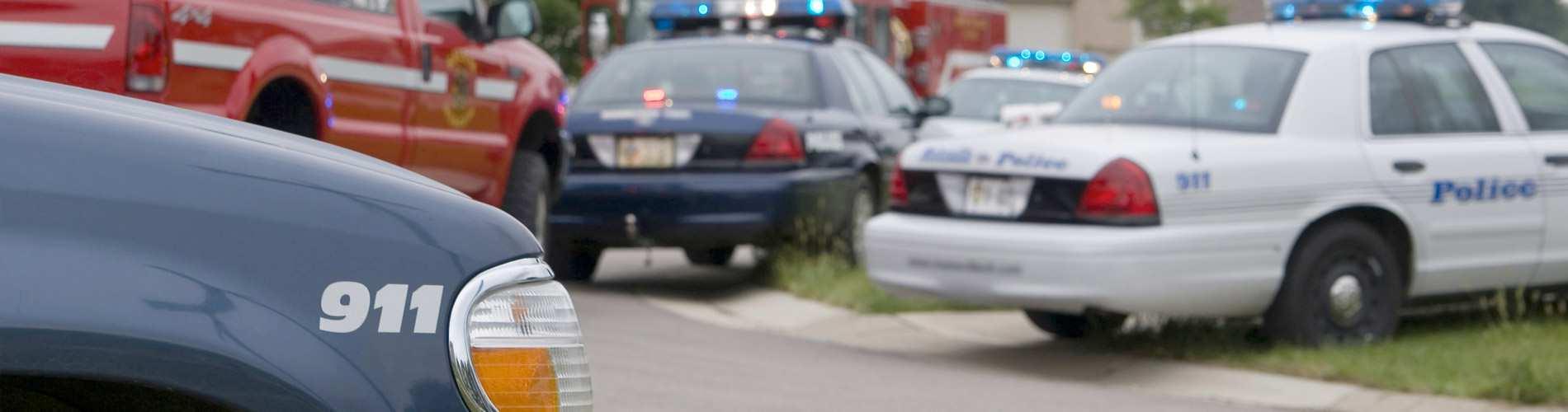 Security & Law Enforcement