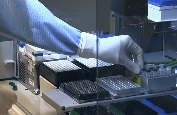 Massively Parallel Sequencing
