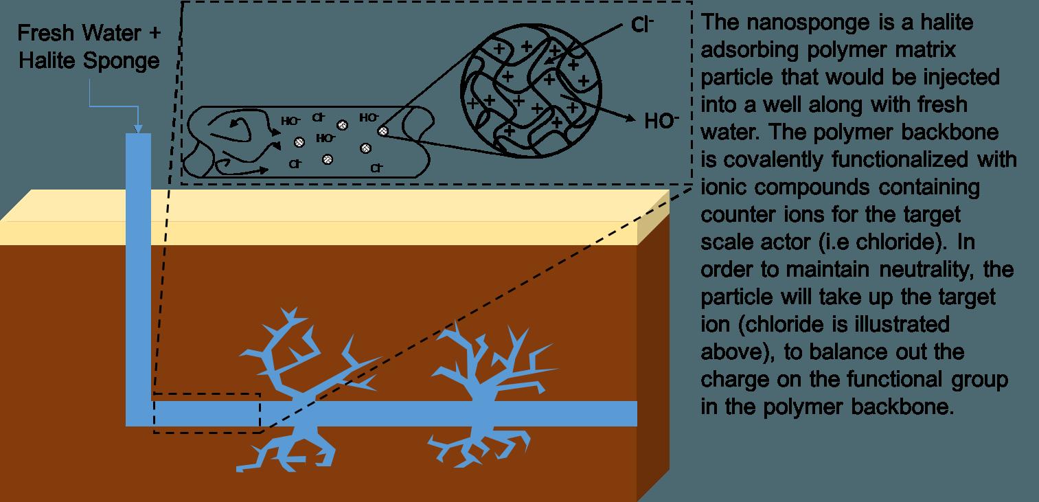 Nanosponge graphic